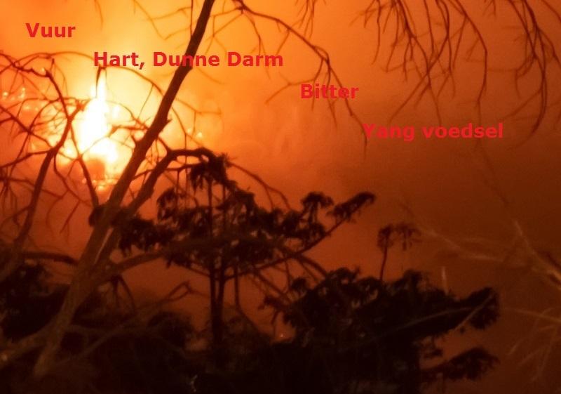 voeding - element vuur